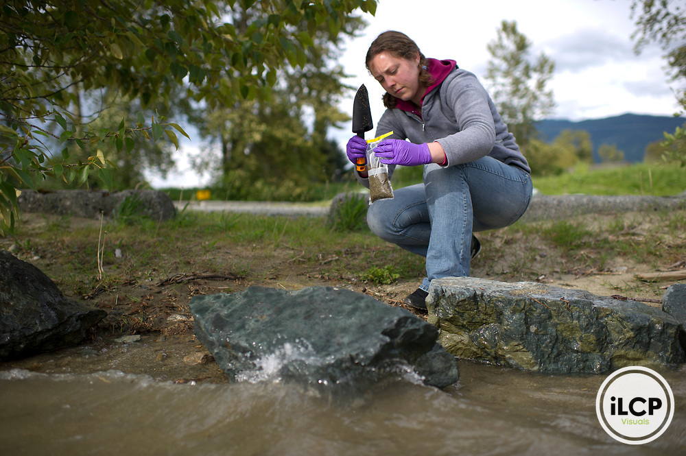 Britta Voss takes a soil sample from the edge of Harrison Lake.