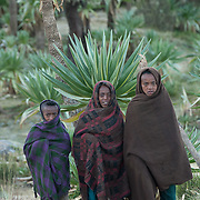 Childern at Simien Mountain N.P., Ethiopia