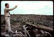 BRAZIL 20105: AMAZON ECO PLOTS