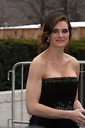 Brooke Shields arrives at The Metropolitan Opera's 125th Anniversary Gala and Placido Domingo's 40th Anniversary Celebration underwritten by Yves Saint Laurent held at The Metropolitian Opera House, Lincoln Center on March 15, 2009 in New York City.