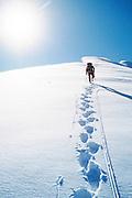Denali National Park, AK, USA<br /> Climbing Mt. Brooks, N. Ridge.<br /> Climber leads the ridge to the summit.