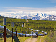 The Trans-Alaska pipeline winds it's way through the Wrangell S Elias mountains