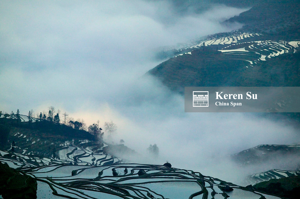 Landscape of water filled rice terraces at sunrise in mist  in the mountain, Yuanyang, Yunnan Province, China