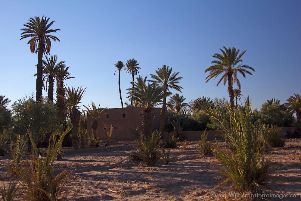 Africa, Morocco, Skoura. Desert Oasis and Kasbahs.