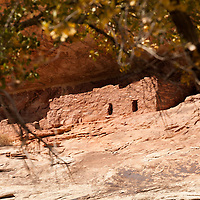 Horse Collar ruin in White Canyon. Natural Bridges Natl. Monument, Utah