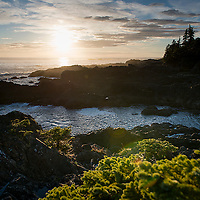 A February trip to Uclulet was unseasonably warm, but the coast was typically beautiful.