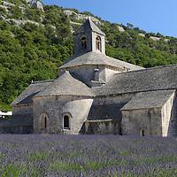 Abbaye Notre-Dame de Sénanque,Abbaye de Senanque,Vaucluse,Provence,France