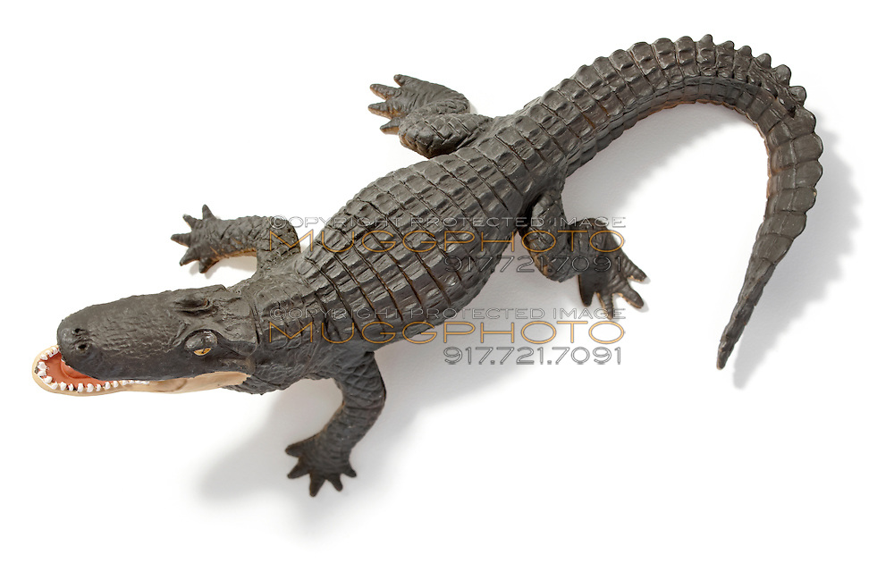 toy alligator photographed on a white background
