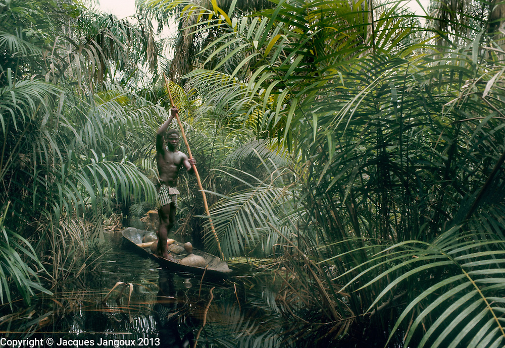 Africa, Libinza tribe, Ngiri River islands, Democratic Republic of the Congo. Man propelling canoe with pole in palm swamp forest.