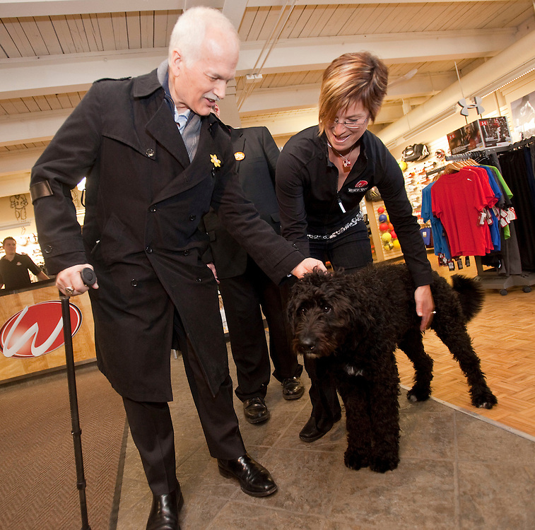 NDP leader Jack Layton greets Stella the dog during a visit to Webco Sports during a campaign stop at her store in Kitchener, Ontario, March 29, 2011. Earlier in the day Layton announced his plan to limit credit card fees for consumers and small businesses.<br /> AFP/GEOFF ROBINS/STR