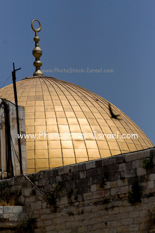 Israel, Jerusalem Old City, Dome of the Rock on Temple mount