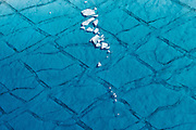 Shards of ice float in a seasonal meltwater lake atop the Greenland ice sheet, August, 2014.
