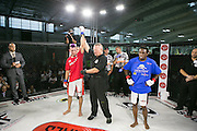 Fighters Source Kings of New York at the MMA World Expo at the Javits Center in New York.