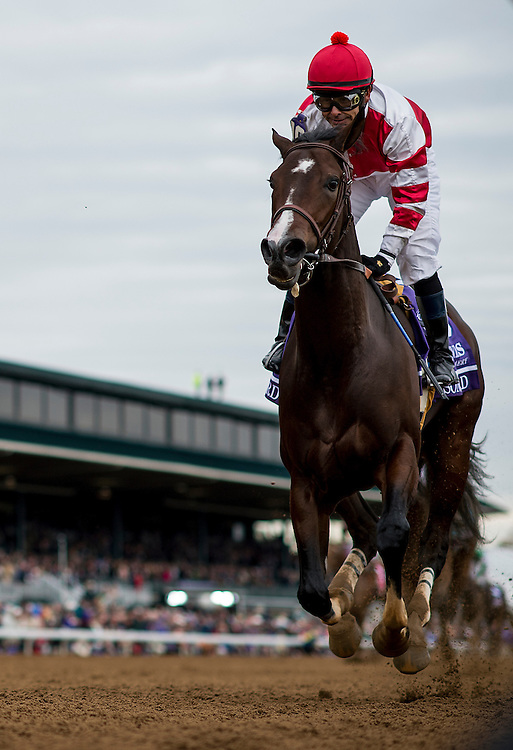 October 31, 2015:  Songbird with Mike Smith wins the Breeders' Cup Juvenile Fillies at Keeneland Race Track in Lexington, Kentucky. Evers/ESW/CSM