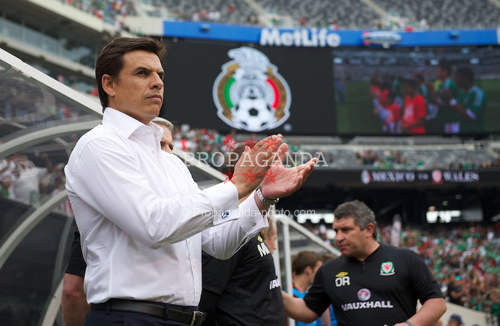 EAST RUTHERFORD, NEW JERSEY, USA - Sunday, May 27, 2012: Wales' manager Chris Coleman before the International Friendly against Mexico at the MetLife Stadium. (Pic by David Rawcliffe/Propaganda)