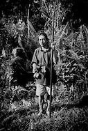 Penan hunter, Philippus, holds his blowpipe and a poison dart, extracted primarily from an ipoh tree, at the edge of the Borneo rainforest that Samling Global Ltd. logging company would like to selectively log, where he hunts monkeys, gibbons, barking deer, wild boar, etc..  Long Kelamu, Sarawak, Malaysia.  According to recent research conducted by scientists at the Stanford, Calif. research department of the Carnegie Institution in Washington, D.C.,the practice of selectively logging out two or three species in a forest, actually creates 60 % to 123 % more damage than deforestation alone.