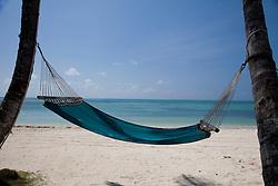 Caribbean.Hammock between palm trees on beach./ Rede entre palmeiras no caribe.