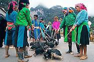 Vietnam Images-market-ethnic people-Ha Giang. hoàng thế nhiệm