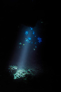 Scuba Diving First Cathedrals