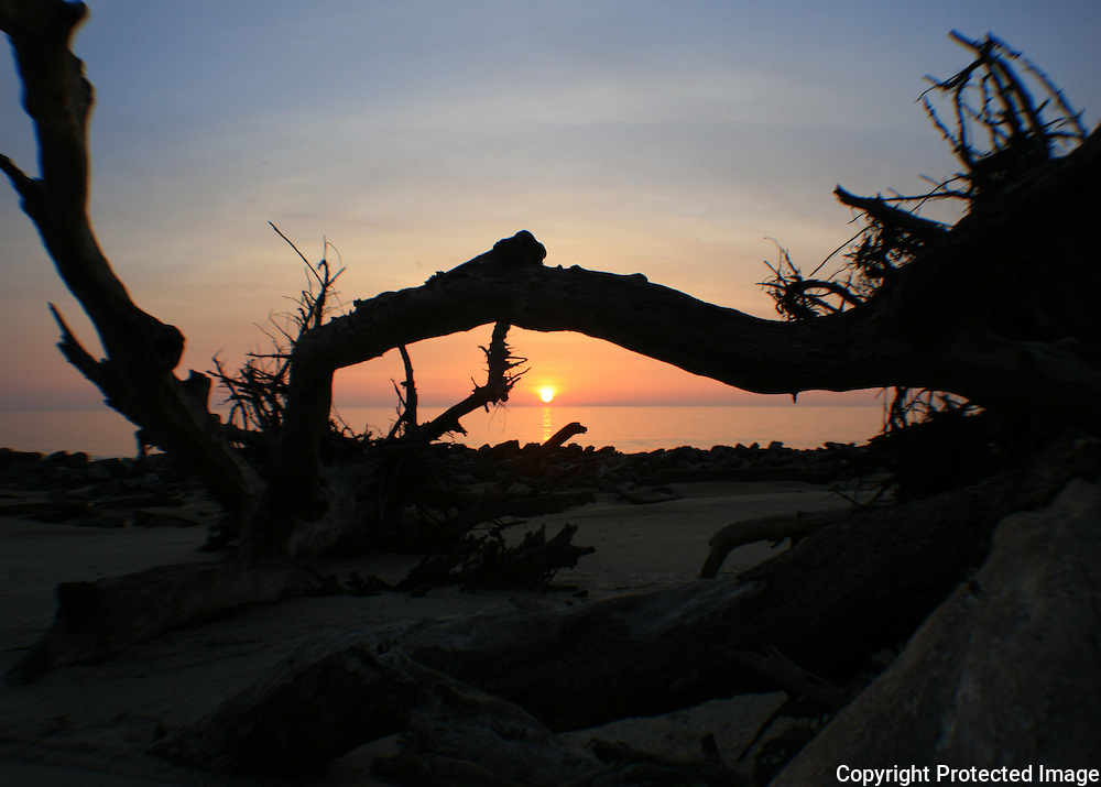 Sunrise at Driftwood Beach, Jekyll Island, fisheye view 1
