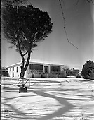 "1958 - Snow scenes at ""Abeline"" house, Blackrock"
