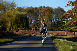 A cyclist in the cold morning frost at Richmond Park as weather in the UK turns to freezing. London, United Kingdom. Tuesday, 19th November 2013. Picture by Ben Stevens / i-Images