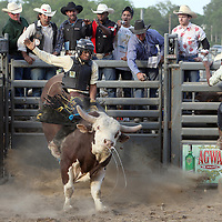 Justin Sue rides Zapata the bull during the Barretos na America rodeo at the Brockton Fairgrounds, Saturday,  May 23, 2009.
