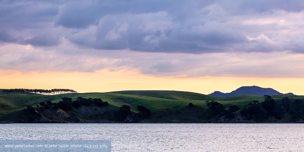Waikalabubu Bay, northern end of Motutapu Island. Warm evening light. Row of trees and Rangitoto Island on the horizon.