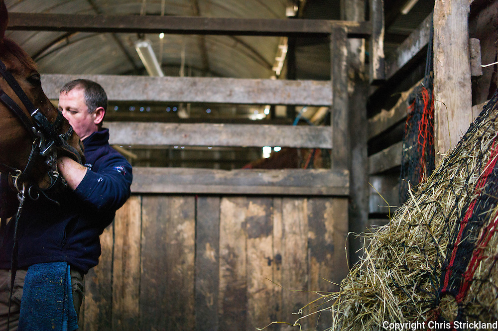 Ancrum, Jedburgh, Scottish Borders, UK. 2nd April 2015. Equine Dentist Stuart Huggins at work in an eventing yard in the Scottish Borders. Healthy teeth in a horse are of course fundamental to its overall wellbeing enabling it to grind down food properly. The mouth is also a crucial element for a rider when controlling the horse with a bridle and bit.