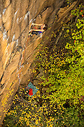 "Elaina Arenz climbing ""Leave It to Jesus,"" 11c, Endless Wall, The New River Gorge"