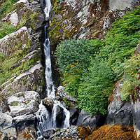 North America, USA, Alaska, Ketchikan. Misty Fjords National Monument, a popular cruise excursion