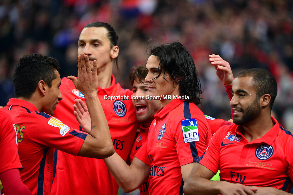 Victoire du PSG /  Edinson CAVANI  / Zlatan IBRAHIMOVIC - 11.04.2015 -  Bastia / PSG - Finale de la Coupe de la Ligue 2015<br />