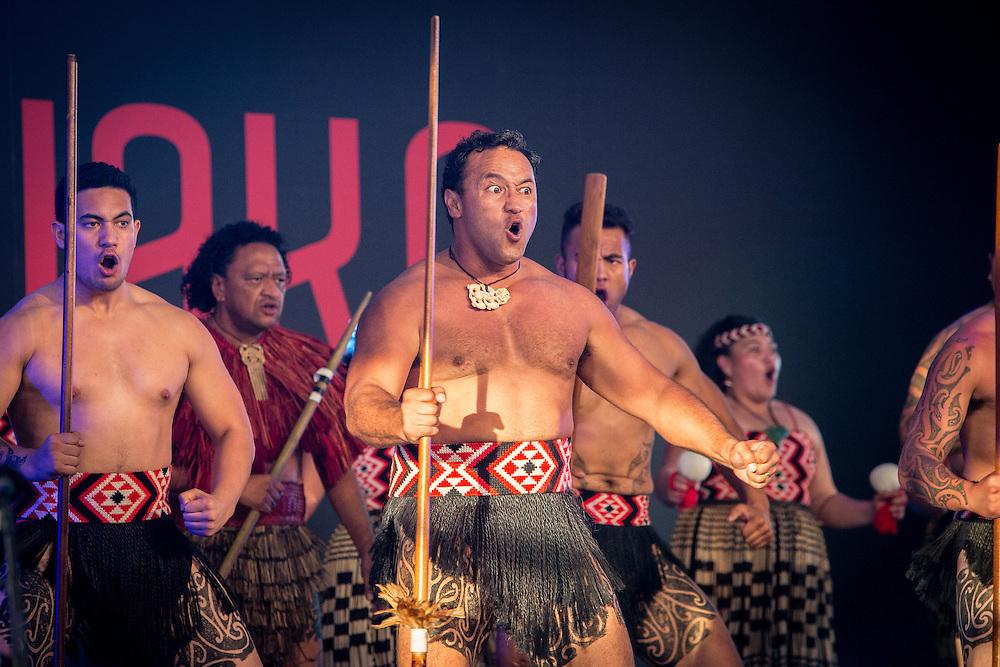 Tamaki Herenga Waka Festival. Auckland. 29 January 2016.