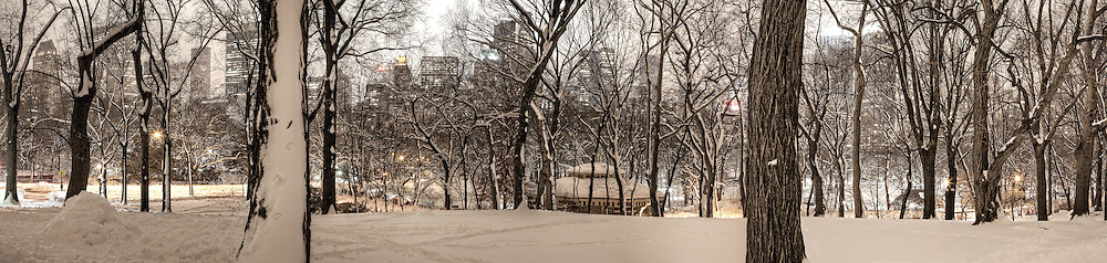 A panoramic shot taken in Central Park facing south.  If you look through the trees you will see that it captures the the expanse of Central Park South from the East side to the West side.