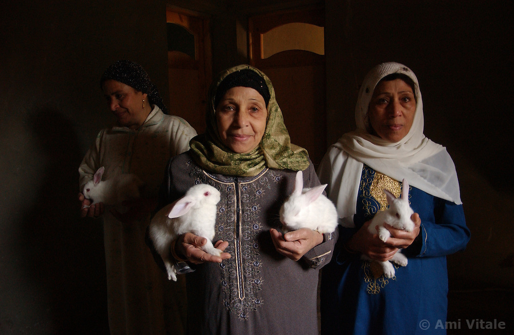 En aiat, 55, center, Fatme, blue, and Saffaa hold rabbits in the village of Hamidia in Fayoume, Egypt December 7, 2005.  Wael,16, who lives in teh village is taking part in a rabbit telefood program funded by FAO.. (Photo Ami Vitale)