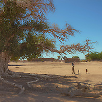 A woman and her children walk near a large tree in the small village of Sibé, along the Niger river, Mali.