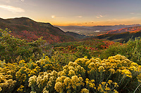 Fall colors at sunrise cover the mountains of East Canyon on Big Mountain Pass in Utah's Wasatch Mountains.