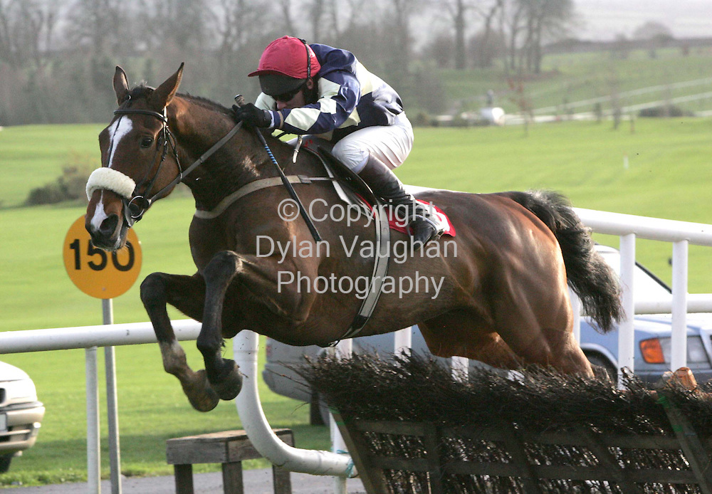 "16/12/2004.P Carberry on ""Wishwillow Lord"" pictured on his way to winning the Christmas Vouchers at Gowran Park Golf Shop Novice Hurdle at Gowran Park yesterday..Picture Dylan Vaughan"