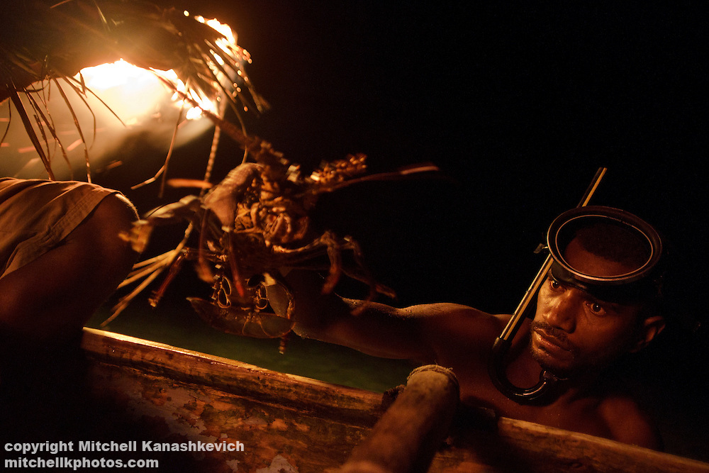 Ni Vanuatu man catches a lobster and puts it into the canoe. The men of Rah Lava Island hunt for lobsters at a particular period of the evening, free diving into the dark sea and using nothing more than fire light and a simple torch. Rah Lava Island, Torba Province, Vanuatu