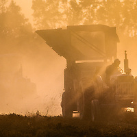 Peanut Farmer in Suffolk, Virginia, harvests in late afternoon