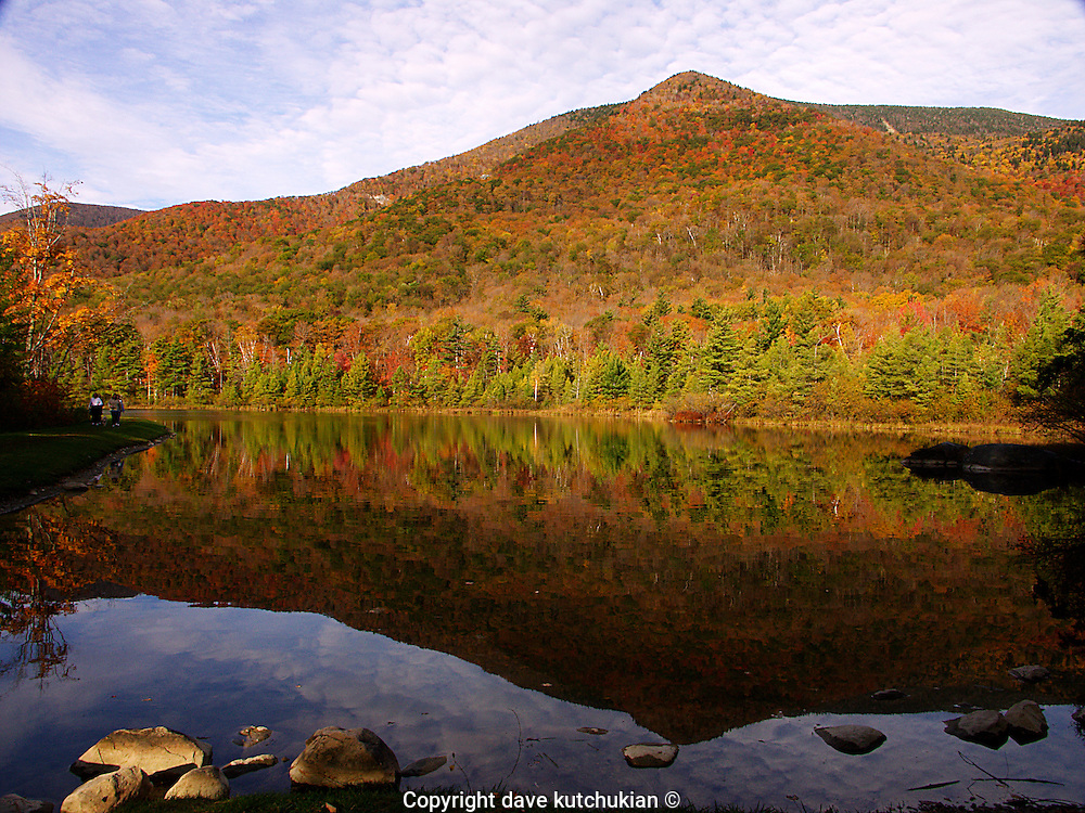 Natural Capital: Manchester, Vermont