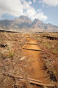 Walking Trail, Drakensberg Mountains, South Africa.