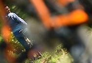 11/10/15 - VIC LE COMTE - PUY DE DOME - FRANCE - Shooting velo Laurent RIGAUD - Photo Jerome CHABANNE