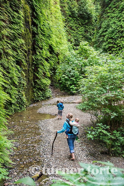 Mother carries toddler on back and hikes barefoot with toddler son, Fern Canyon, Prarie Creek Redwoods State Park, Redwood National Park, California