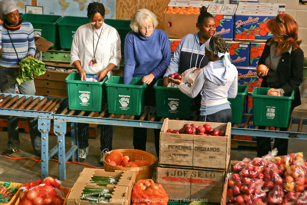 Staff and volunteers packing Good Food Boxes at FoodShare Toronto's Field to Table Centre.