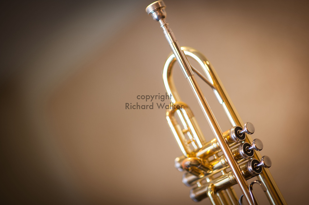 2015 August 15 - Trumpet and mouthpiece, Seattle, WA, USA. By Richard Walker