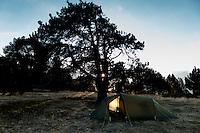Camping at Coll d'Ordino, 1 980 msl, Andorra