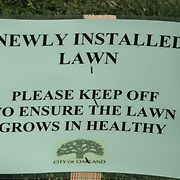 Stay off the Lawn @ Oakland's City Hall