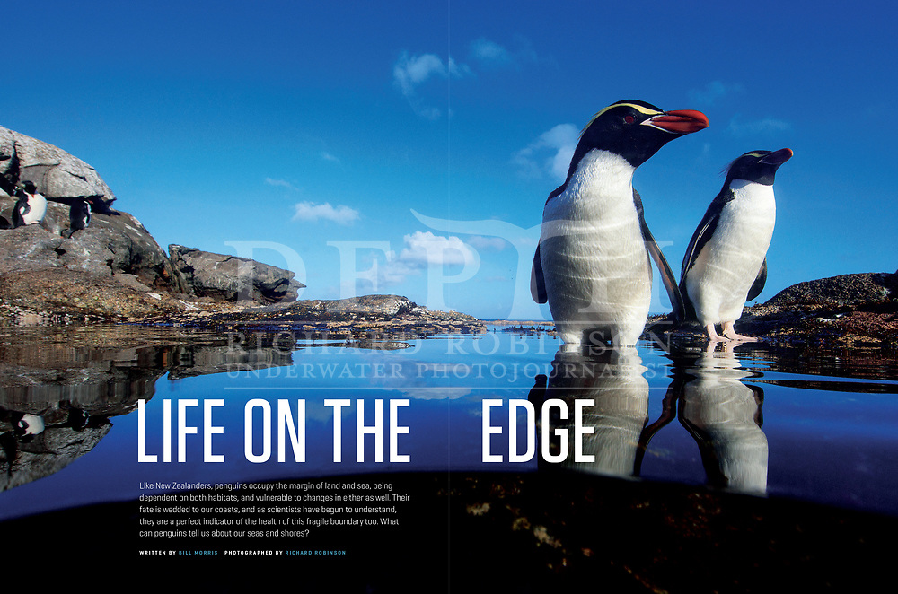 NEW ZEALAND GEOGRAPHIC ISSUE 143 JANUARY- FEBUARY 2017.<br />