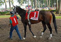 King of the Roxy, Barbaro Stakes 97.15.07